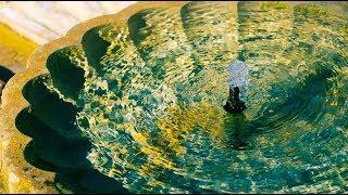Download Las voces del agua Video