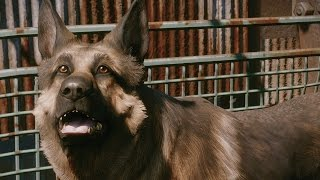 Download Meeting Dogmeat (alternate version) | Fallout 4 Video