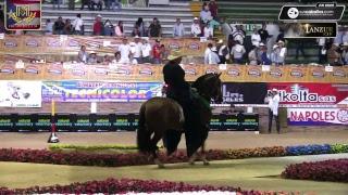 Download XXVI Grado A, VI Copa Surcolombiana, Pitalito 2018 Día 2 Video