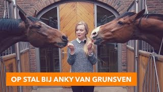 Download Mega staltour bij Anky van Grunsven | PaardenpraatTV Video