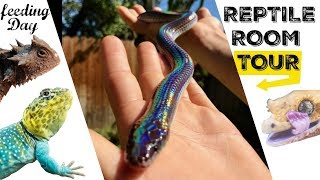 Download CHRIS'S REPTILE ROOM TOUR & FEEDING!! Video