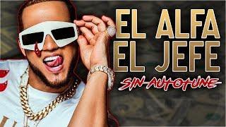 Download Voz Real EL ALFA EL JEFE Sin Auto-Tune | Mega Maratón Video