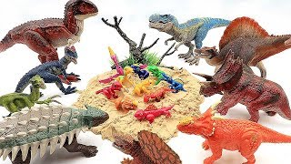 Download Dinosaur Laying Eggs! Hatching Eggs Transformer Little Dinosaurs!! Dino Toys For Kids!! Video