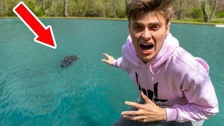 Download MONSTER IN POND!! (CAUGHT ON CAMERA) Video