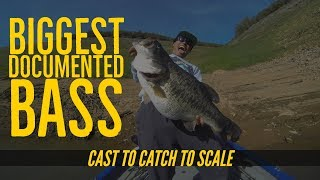 Download Biggest Bass Ever Documented on Video Cast to Catch to SCALE Video