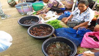 Download Thai-Laos Morning market , Frogs and Fields crabs in the market Video
