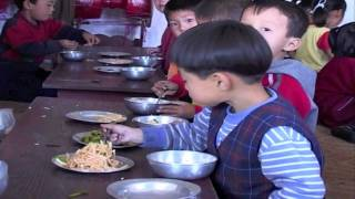 Download World Food Programme: Improving Nutrition, Improving Lives Video