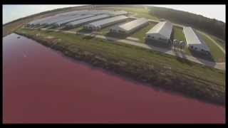 Download Spy Drones Expose Smithfield Foods Factory Farms Video