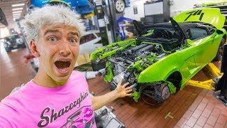 Download GRACE SHARER DESTROYED THE LAMBORGHINI SHARERGHINI (THIS IS BAD!!) Video