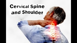 Download Cervical spine and shoulder Video