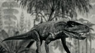 Download Living Dinosaur of Liberia Video