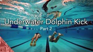 Download 2 Skills to improve your underwater dolphin kick. Swim faster underwater Video