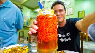 Download Liquid Meat + GHOST CHILI PEPPER and King of Crackling! Food Tour in Belo Horizonte, Brazil! Video