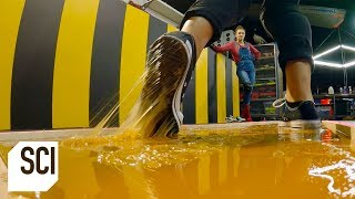 Download Can You Walk on Rodent Glue Without Getting Stuck? | MythBusters Jr. Video