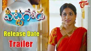 Download Pittagoda Release Date Trailer    Punarnavi, Viswadev #Pittagoda Video