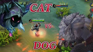 Download THE WOLF SNIFF THE CAT ROGER VS HELCURT Video