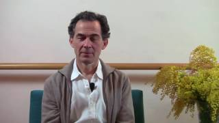 Download Meditación: Las Etapas De La Investigación Video