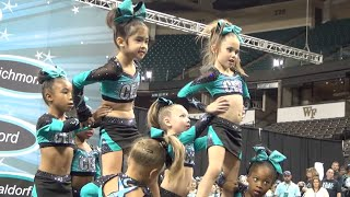 Download Cheer Extreme Raleigh Tiny Turtles 2015 Showcase Video