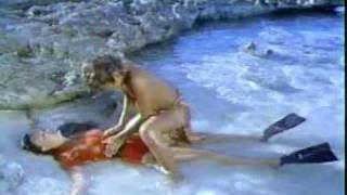 Download BEYOND THE REEF MOVIE PART 1 1981 Video