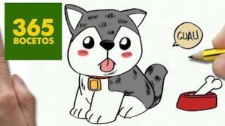 Como Dibujar Perritos Kawaii Paso A Paso Os Enseñamos A Dibujar Un