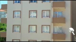 Download Ev sahibi karganın seyir keyfi Video