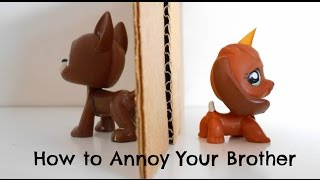 Download LPS: How to Annoy Your Brother Video