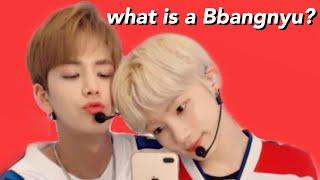 Download what is a Bbangnyu? (The Boyz) Video