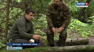 Download Прикамские археологи установили точные границы Гляденовского городища Video