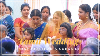 Download A Jaffna Tamil Wedding Mayoorathan & Subasini Video