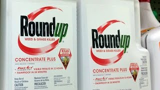 Download Monsanto ordered to pay $289M over claims weed killers caused cancer Video