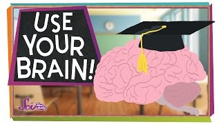 Download Use Your Brain! Video