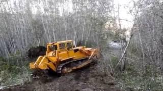 Download Bulldozer making logging roads Video