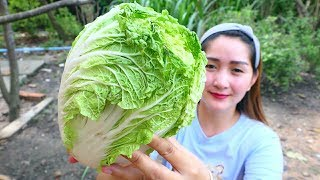 Download Yummy Chinese Cabbage Rolling Shrimp - Rolling Cooking - Cooking With Sros Video