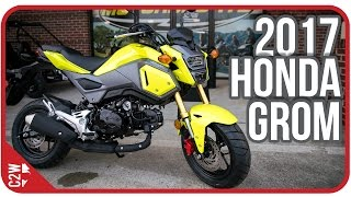 Download 2017 Honda Grom | First Ride Video
