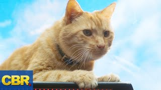 Download What Nobody Realized About Goose The Cat In Captain Marvel Video