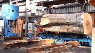 Download Inside a modern sawmill in Japan - Visit wood processing plants Video