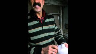 Download satılık kuşlar güvercinler ; 2000 lira çifti isteyen 05301597547 arayabilir -Ankara Video