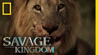 Download Sekekama: The Colossal King | Savage Kingdom Video