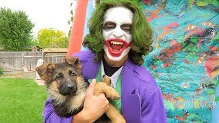 Download Funny Clown SAVES My Puppy Sniper! Video