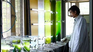 Download Centre for Environmental Science and Engineering Video