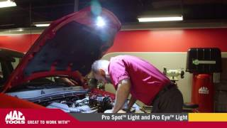 Download Mac Tools - Pro Spot™ and Pro Eye™ Light Video