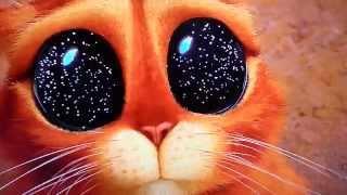 Download El gato con botas escenas chistosa Video