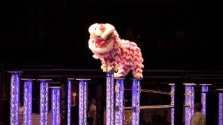 Download 《鱷魚恤香港世界賽》Crocodile World Hong Kong 【 Lion Dance 】Championship 2016 @ Hong Kong Coliseum Video