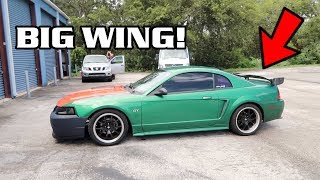 Download Big Spoiler and Getting Wrapped! Video