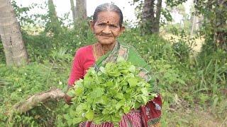 Download How To Cook Thotakura Curry in Grandma's Style || Myna Street Food || Food Info Video