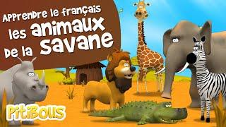 Download Apprendre les animaux de la savane - Les Pitibous Video