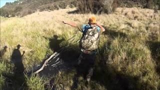 Download Oamaru public hut hunt   NZ Video