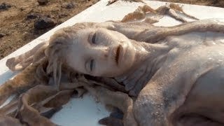 Download 10 Mysterious Washed Up CREATURES Video