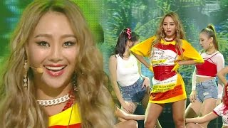 Download 《SEXY》 Hyolyn (효린) - Paradise @인기가요 Inkigayo 20161120 Video