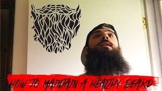 Download HOW TO MAINTAIN A BEARD | DAY 368 Video